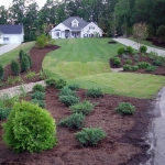 Sodding and Landscaping